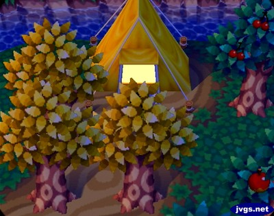 A summer camper's tent in Animal Crossing for Nintendo GameCube.