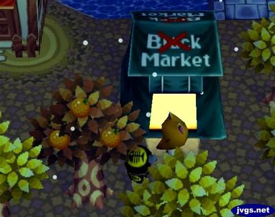 Crazy Redd's black market tent on Sale Day.