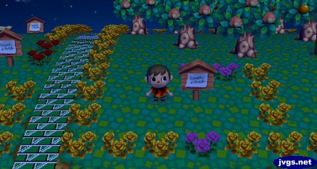 Many flowers were missing from Bob's grave.