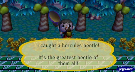 I caught a hercules beetle! It's the greatest beetle of them all!