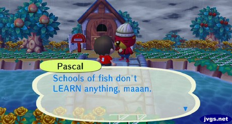 Pascal: Schools of fish don't LEARN anything, maaan.