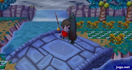I catch an arapaima from my bridge in front of the waterfall.