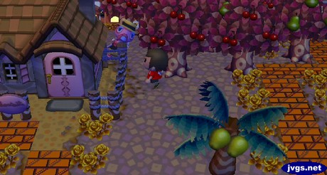 Franklin the turkey hides behind a house during the harvest festival.