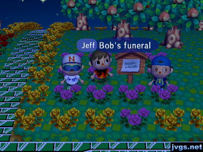 Jeff, standing by purple roses at a house plot: Bob's funeral.