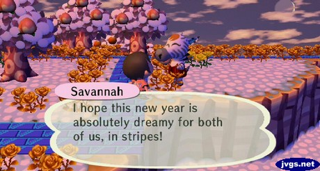 Savannah: I hope this new year is absolutely dreamy for both of us, in stripes!
