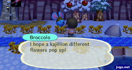 Broccolo, surrounded by gold roses: I hope a kajillion different flowers pop up!