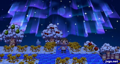 The northern lights and a new moon in Animal Crossing: City Folk.