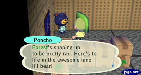Poncho: Forest's shaping up to be pretty rad. Here's to life in the awesome lane, li'l bear!