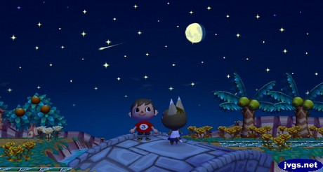 Jeff and Kitty stand on the bridge as a shooting star flies by overhead during a meteor shower in ACCF.
