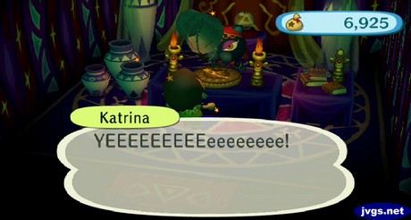 A bucket drops on my head as Katrina prepares to tell me my fortune in Animal Crossing: City Folk.
