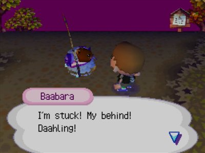 Baabara, in a pitfall: I'm stuck! My behind! Daahling!