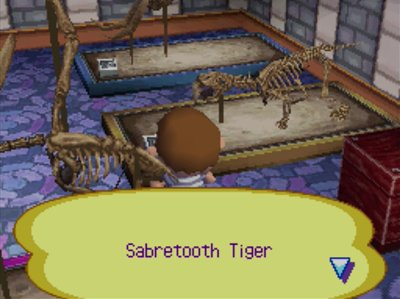 The Sabretooth Tiger fossil at the museum in Animal Crossing: Wild World.