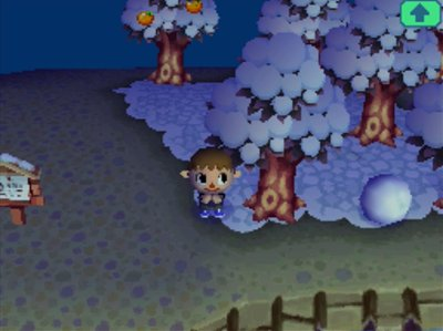 Wishing on a shooting star in Animal Crossing: Wild World.