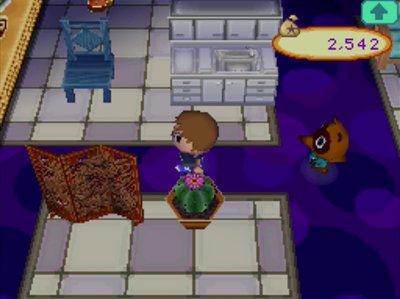 The second floor of Nookington's in Animal Crossing: Wild World.
