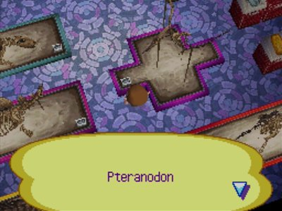 A completed pteradon in the museum of Animal Crossing: Wild World.