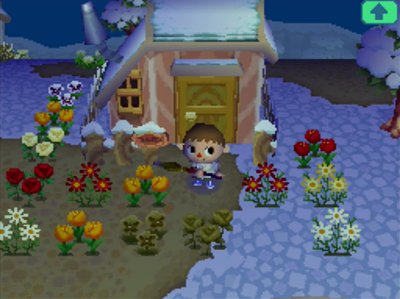 The flower garden in Puddles' front yard.