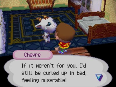 Chevre: If it weren't for you, I'd still be curled up in bed, feeling miserable!