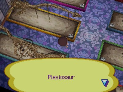 The complete plesiosaur fossil in the museum of Animal Crossing: Wild World for Nintendo DS.