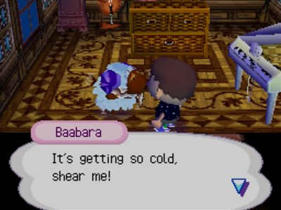 Baabara: It's getting so cold, shear me!