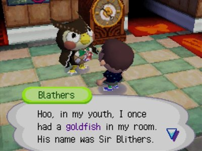 Blathers: Hoo, in my youth, I once had a goldfish in my room. His name was Sir Blithers.
