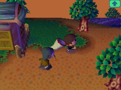 Lyle follows me around in Animal Crossing: Wild World (ACWW) for Nintendo DS, as played on the Wii U Virtual Console.