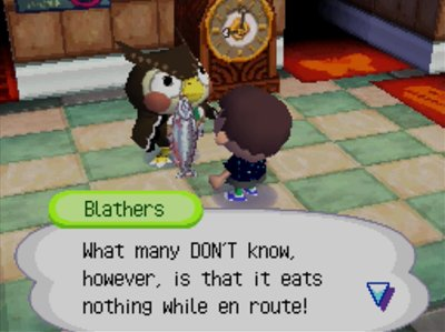 Blathers: What many DON'T know, however, is that it eats nothing while en route!