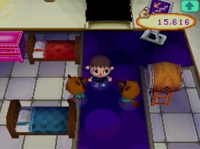 Two beds in the upstairs of Nookington's in Animal Crossing: Wild World.