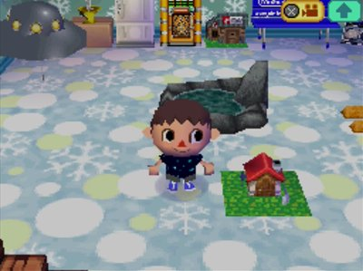 The one-story model in my Animal Crossing: Wild World house.