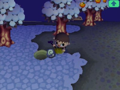 Digging up a fossil in the snow of Animal Crossing: Wild World (ACWW).