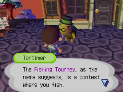 Tortimer: The Fishing Tourney, as the name suggests, is a contest where you fish.