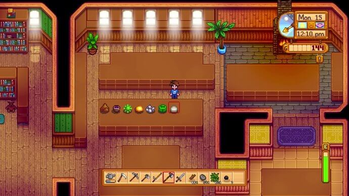 Seven items on display in the Stardew Valley museum.