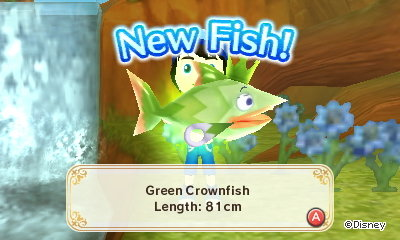 New Fish! Green Crownfish. Length: 81cm.