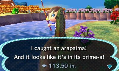 I caught an arapaima! And it looks like it's in its prime-a!