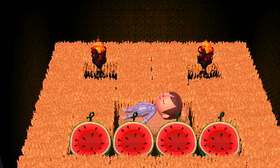 Wheat and watermelon room.