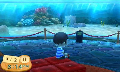 Me sitting in the (empty) aquarium at the museum.