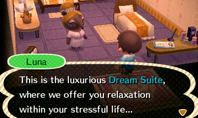 Luna: This is the luxurious Dream Suite, where we offer you relaxation within your stressful life...