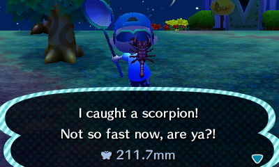 I caught a scorpion! Not so fast now, are ya?!