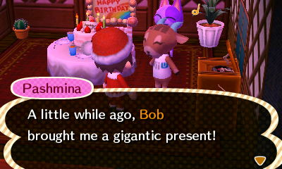Pashmina: A little while ago, Bob brought me a gigantic present!