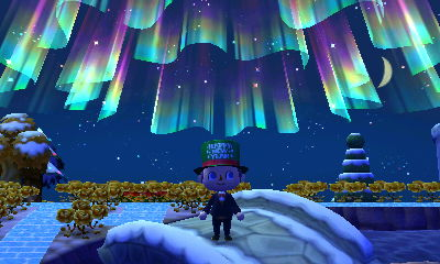 The Northern Lights above Forest.