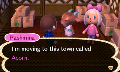 Pashmina: I'm moving to this town called Acorn.