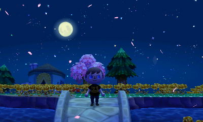 Cherry blossom petals falling from the night sky.