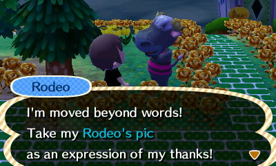 Rodeo: I'm moved beyond words! Take my Rodeo's pic as an expression of my thanks!