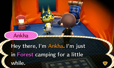 Ankha: Hey there, I'm Ankha. I'm just in Forest camping for a little while.