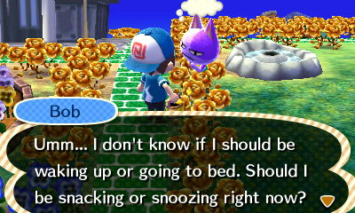 Bob: Umm... I don't know if I should be waking up or going to bed. Should I be snacking or snoozing right now?