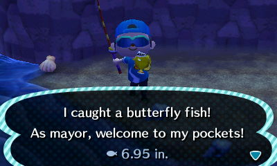 I caught a butterfly fish! As mayor, welcome to my pockets!