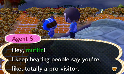 Agent S: Hey, muffin! I keep hearing people say you're totally a pro visitor!