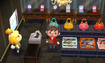 Animal Crossing: Happy Home Designer Blog, Day 25