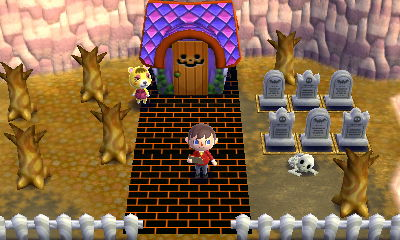 Animal Crossing Happy Home Designer Blog Day 101